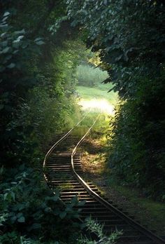 train tracks through a tunnel of leaves~~ Some paths are so beautiful to behold Abandoned Train, Abandoned Places, Magic Places, Places To Visit, Beautiful World, Beautiful Places, Under The Tuscan Sun, Old Trains, Train Tracks