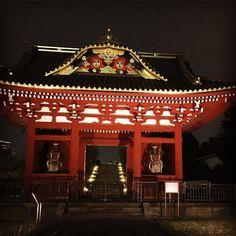 Shiba Koen Tokyo www.couchflyer.com #bestoftheday #instagood #buddha #travel #tokyo #spring