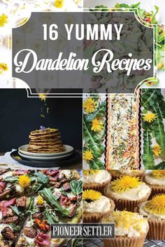 Recipes To Make From Your Pulled Weeds 16 Amazing Dandelion Recipes To Make From Your Pulled Amazing Dandelion Recipes To Make From Your Pulled Weeds Healthy Dinner Recipes, Cooking Recipes, Herb Recipes, Dandelion Recipes, Edible Wild Plants, Flower Food, Wild Edibles, Buffet, Greens Recipe