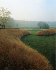 Drifts of an amber colored grass in a garden by Jacques Wirtz. Garden Architecture, Architecture Plan, Ornamental Grasses, Tall Grasses, Parcs, Plantation, Dream Garden, Hedges, Backyard Landscaping