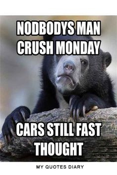 man crush monday quotes and memes Knitting Humor, Crochet Humor, Baby Knitting, Funny Crochet, Man Crush Monday Quotes, Crush Quotes, Confession Bear, Beginner Knitting Patterns, All Jokes
