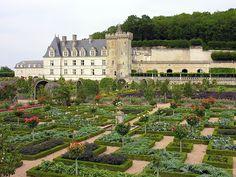 E' possibile, anche in questo tempo moderno ed inquieto, trovare rifugio, pace e godimento in un orto-giardino? Sicuramente è un'esperienza che...