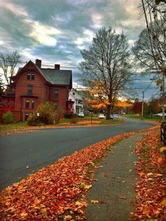 Fall is our favourite time of the year! We post some warm and cozy pictures of all things fall and...