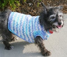Dog Sweater Crochet Pattern crafts-knitting-and-crocheting-2