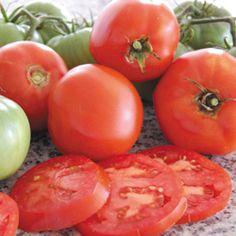 2012 GARDEN- 1 PLANT. GOOD YIELD. CANNED. Tomato, Brandywine. Heirloom 80 days.