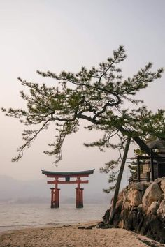 Miyajima Gate, 2014 by Owen Spargo Photo Japon, Japan Photo, Hiroshima, Torii Gate, Art Asiatique, Miyajima, Japanese Landscape, Amaterasu, Dojo