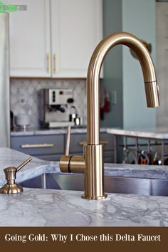 Delta Gold Trinsic Kitchen Faucet, Chic and Super Functional in Champagne Bronze