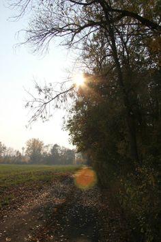 Poľné cesty sa predlžujú a kúpu v posledných teplých lúčoch.