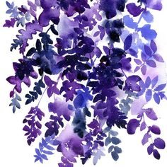 I painted this Watercolor Wisteria after a visit to the Botanical Garden in Brooklyn last year. These purple flowers were hanging from a gorgeous bonsai and immediately I knew I had to paint them.  _____________________________________________  AVAILABLE SIZES:  A5 (210x148mm) A4 (297x210mm)  _____________________________________________  ABOUT:  This listing is for one print from my original watercolor Purple Rain (Ingrid Sanchez, NY 2016).  Digital printed on textured 255gsm paper, it…