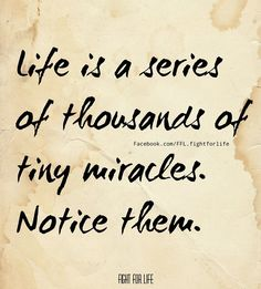 Notice the miracles