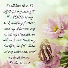 Psalm 18:1-2 KJV