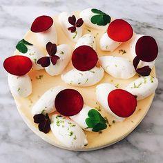 Venez découvrir ou redécouvrir notre fameux cheesecake aux agrumes. #thoumieux…