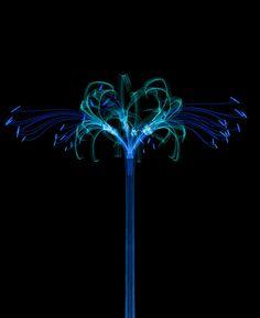 Inorganic Flora by Macoto Murayama