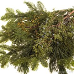 Whether you are decorating for a wedding or event this holiday season, consider using fresh and fragrant Christmas Greens! These fresh boughs of greenery smell heavenly, are affordable and go beautifully with existing decorations. Pair them with bouquets and arrangements of wedding flowers or with ribbons and candles - either way they make for stunning holiday decorations! Order Christmas Greens online at www.GrowersBox.com.