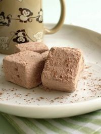 Super Easy Chocolate Marshmallow Recipe on http://www.theculinarylife.com