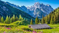 Das Münchner Alpenvorland: Die schönsten Ausflugsziele im Sommer in Serie. Teil 2 zur Region Berchtesgardener Land: #münchen #muc #muenchen #blog #blogbeitrag #hütten #alpen #wandern #ausflug #sommer #freizeit #alpen #berchtesgarden #BerchtesgadenerLand