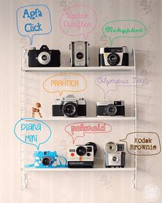 blogtrend: lomography