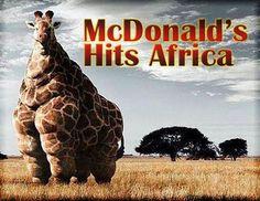 mcdonalds-hits-africa