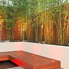 Bamboo Planter Design. Side yard privacy screen