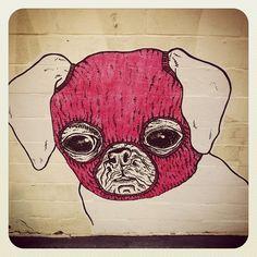 Pug graffiti!