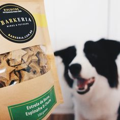eba! :D ganhei várias guloseimas da @abarkeria! estrelinhas de bacon, espinafre e chuchu, sticks de frango e pasta de amendoim. tudo 100% natural e uma delícia! valeu!  #bordercollie #bordercollielovers #bordercolliesofinstagram #atdogs #barkeria #dog #dailydog #dailypuppy #dogstagram #dogskickass #dogsofinstagram #dogoftheday #dog_features #dogfessional #dogscorner #doggy_features #dogs #girlsweardog #happy_pet #instapet #insta_dogs #ilovemybordercollie #jj_justdogs #pawstruck #puppy…