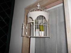 Piantine in gabbia...