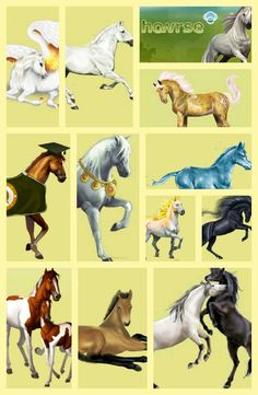 Howrse only four of these are divine horses and they are rare but I have 1