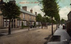 Avenue Road, St Neots when the trees were still there in 1909