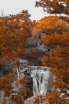 Nature - GEORGIA