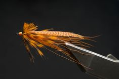 Orange Owl - This Brown Owl variation is tied with all orange materials My Favorite Image, Fly Fishing, The Good Place, Bugs, Owl, Orange, Pictures, Photos, Bicycle Crunches