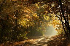 jesien ;)
