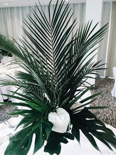 W Hotel, Wedding Designs, Bouquets, Plant Leaves, Plants, Bouquet, Bouquet Of Flowers, Plant, Planets