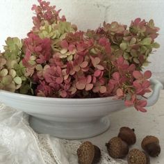 Antique white ironstone ...autumn beauties ...my vanilla strawberry hydrangeas. Leave them in water, out of the sun, and they will slowly dry out. You can keep them for months.