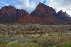 Zion National Park 2010 - 4