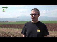 ΠΑΥΛΟΣ ΑΛΕΞΑΝΔΡΙΔΗΣ στην έναρξη του NEXUR Programme - YouTube