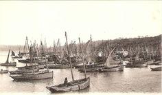 """D 1760 """"Joséphine"""",    1911 Galerie de bateaux de pêche de DOUARNENEZ (chaloupe) - www.bagoucozdz.fr"""