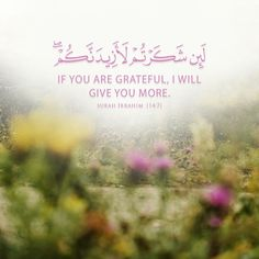 Quran, Grateful, Passion, Movie Posters, Movies, Films, Film Poster, Cinema, Movie