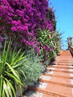 Top 10 Mediterranean Garden Designs