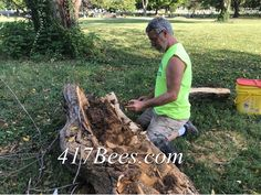 Springfield Missouri, Save The Bees, Beekeeping, Cemetery, Future, Crafts, Memorial Park, Manualidades, Future Tense