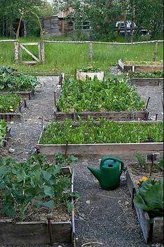 Vegetable Garden Ideas | Guard'n The Planet: Vegetable Gardens: Spring 2011 Style Sampler