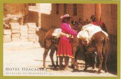 PK0180. Mujer de la Quebrada. Guebrada de Humahuaca. Argentina.