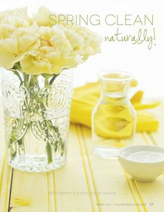 Natural cleaners for spring cleaning