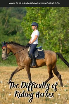 Riding horses can look easy but it is not. Learn why it is so hard. The ones that make it look easy are good riders, or they have a horse making them look good. Horseback Riding Tips, Riding Horses, Horse Training Tips, Horse Care, My Ride, Upper Body, Equestrian, Riding Helmets, Things That Bounce