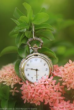 When you gaze into my eyes, time stands still for those few precious moments. Sometimes, I can feel you looking deeper, straight into the depths of my soul. Raindrops And Roses, Time Stood Still, Pocket Watch Antique, Antique Clocks, Antique Watches, Time Art, Time Time, Precious Moments, Belle Photo