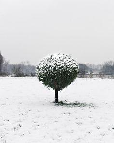 Idea for Cold, Snow, Landscape