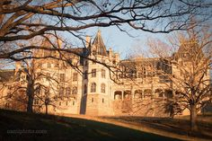 The late afternoon sun illuminating the back of the historic the Biltmore House in Asheville North Carolina. @camillacalnanphotography @biltmoreestate #biltmorehouse #biltmoreestate #Asheville #nc #visitasheville #visitnc #828isgreat #liveavl #ashvibes #travelnc #igersnc #pocket_trees #tree_captures #wonderful_places #architecture #archilovers #architecturelovers #urbanphotography #magic__photography #visual_magic #chasinglight #nikontop #nikonphotography #nikon_photography_ #wanderlust…