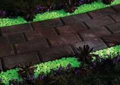 Moonlight pebbles -- glow in the dark rocks that charge in the sun and add a little glow to a path or feature for up to six hours after the sun goes down.