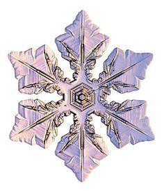 copos-de-nieve-snowflakes-snow-crystals-cristales-6