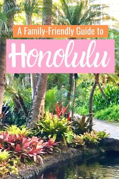 Looking for family-friendly things to do in and around Honolulu, Hawaii? We've got you covered! From Waikiki to Pearl Harbor, we'll show you everything from kid friendly menus to the most beautiful beaches on Oahu! Usa Travel Guide, Travel Usa, Travel Tips, Travel Ideas, Cool Places To Visit, Places To Travel, Amazing Destinations, Travel Destinations, Stuff To Do
