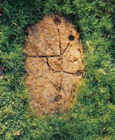 DalgarvenMillCup&Ring - Stones of Scotland